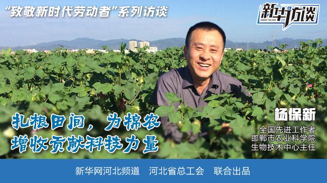 為棉農增收貢獻力量